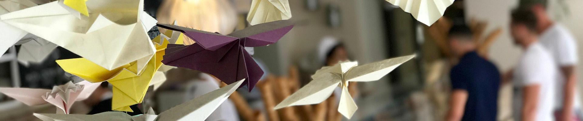 Sosionom FO profesjonsråd. Papirfly og kreativitet.