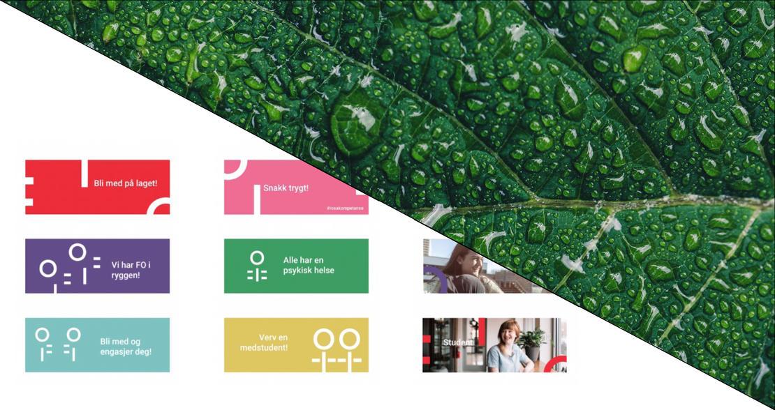 FREMTID: FO-Studentenes nye visuelle profil er preget av farger. Studentene diskuterte engasjert tiltak FO kan ta for bærekraft.