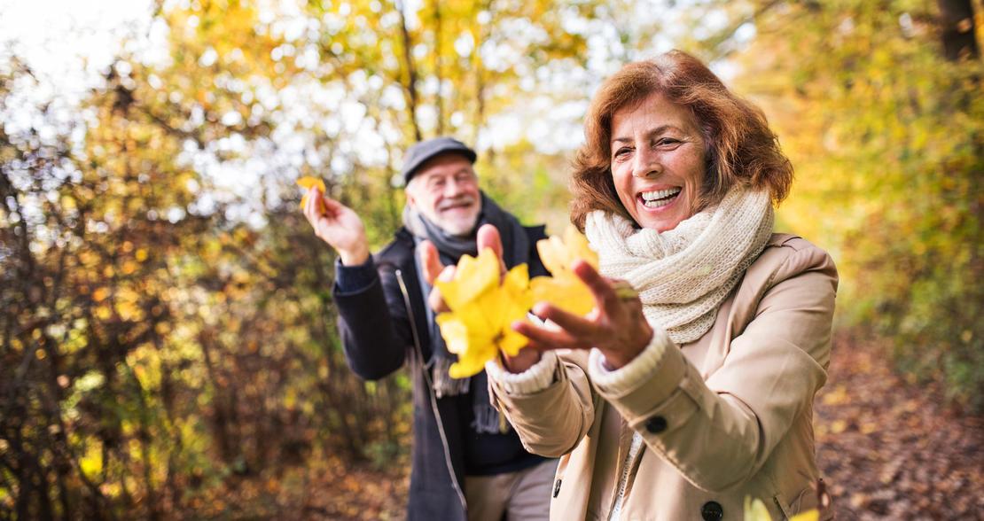 LOfavør pensjonskonto: Mer pensjon for pengene