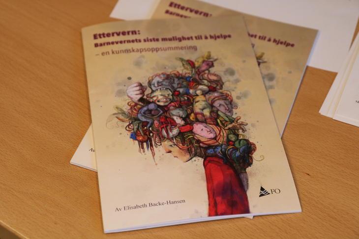 Forsiden til kunnskapsoppsummering er laget av Lisa Aisato.