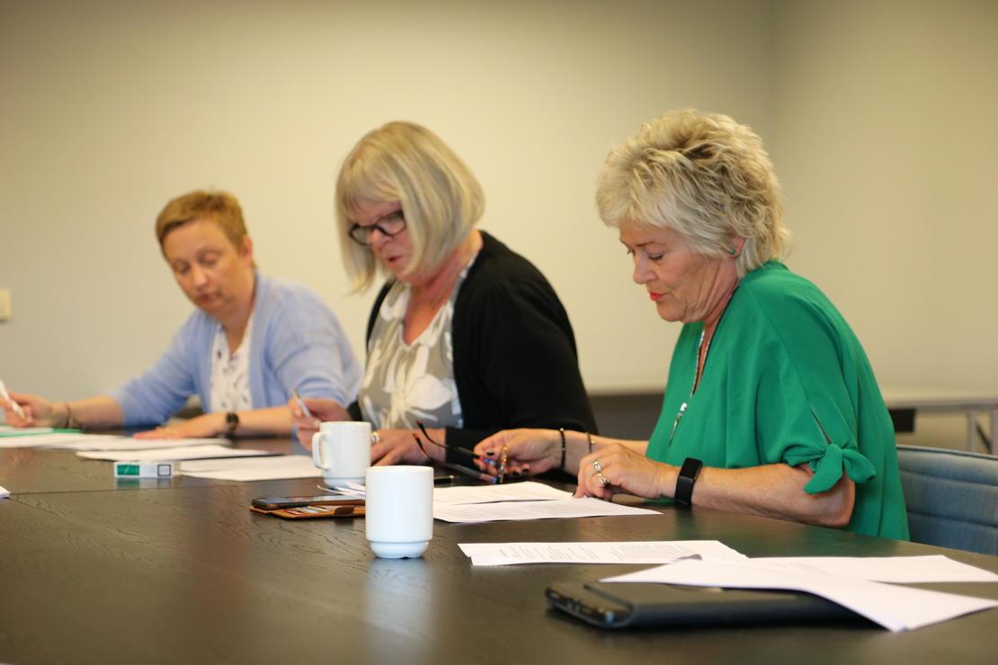 Landdstyrerepresentanter fra henholdsvis FO Nordland, Vestfold og Sogn og Fjordane: Gunhild Holthe, TorildKristoffersen og Trude Farda